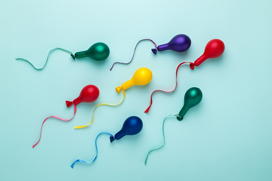 Sperm Health: The Other Side of the Equation